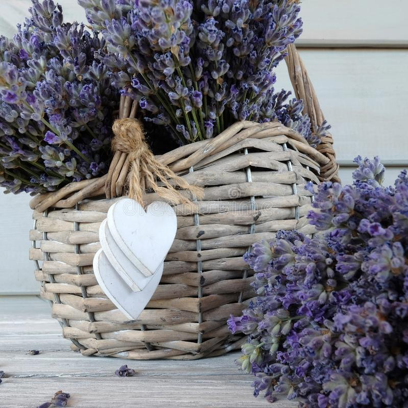 Καλάθι lavender στοκ εικόνα