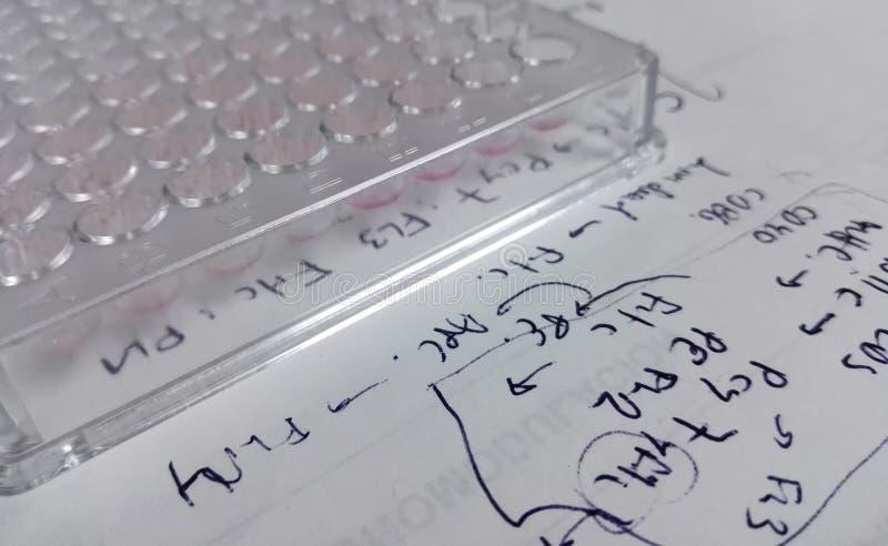 96-καλά πιάτο, πλαστικό εργαστηριακό υλικό, σε ένα φύλλο εγγράφου με τις ερευνητικές σημειώσεις στοκ φωτογραφία