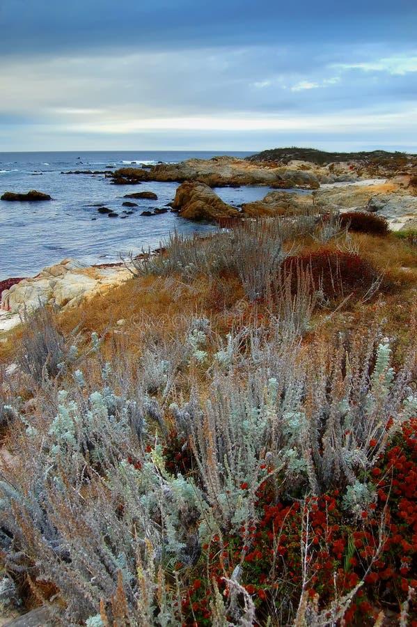 Καλιφόρνια χρωματίζει την παραλία στοκ εικόνες