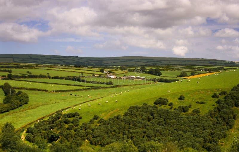 καλλιεργήσιμο έδαφος ΚΟΝΤΑ ΣΕ EXMOOR SOMERSET Αγγλία στοκ εικόνα