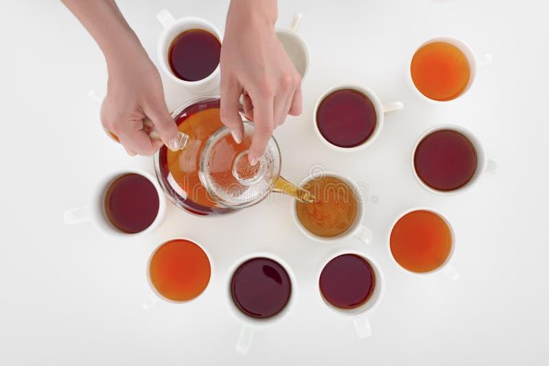 καλλιεργημένος πυροβολισμός του προσώπου που χύνει το βοτανικό τσάι στα φλυτζάνια στοκ φωτογραφία