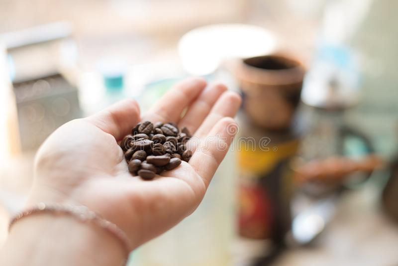 Καλλιεργημένος πυροβολισμός των χεριών μιας γυναίκας που κρατούν πρόσφατα roastd τον αρωματικό καφέ στοκ εικόνα