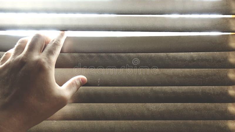 Καλλιεργημένο χέρι στους ξύλινους τυφλούς παραθύρων Κάποιος που κοιτάζει από το παράθυρο στοκ φωτογραφίες