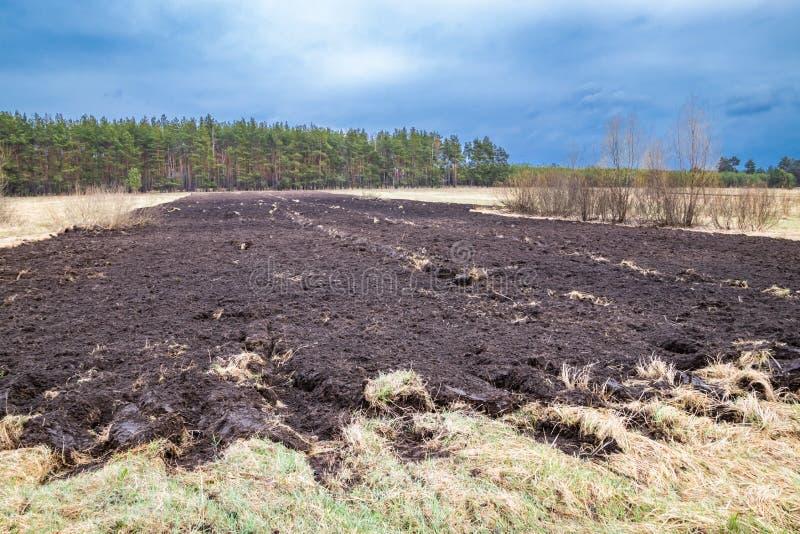 Καλλιεργημένο χώμα για τη σπορά του σιταριού, αυξανόμενη εποχή άνοιξης στοκ εικόνα