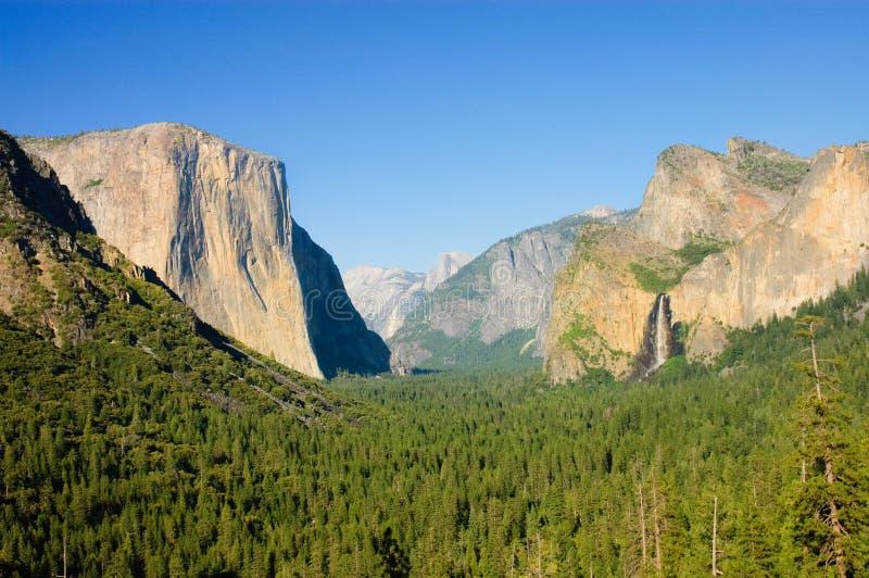 Καλοκαίρι κοιλάδων Yosemite στοκ φωτογραφία