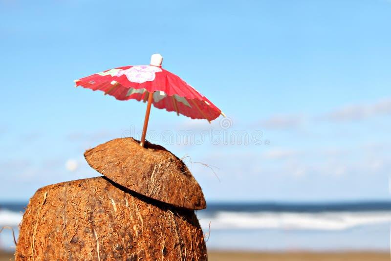 Download καλοκαίρι κοκτέιλ στοκ εικόνα. εικόνα από κοκτέιλ, τροπικός - 381649