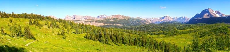 Καλοκαίρι λιβαδιών περασμάτων Healy που το εθνικό πάρκο Canadian Rockies Banff στοκ εικόνες