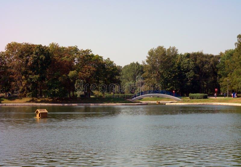 Καλοκαίρι στο πάρκο πόλεων στοκ φωτογραφία με δικαίωμα ελεύθερης χρήσης