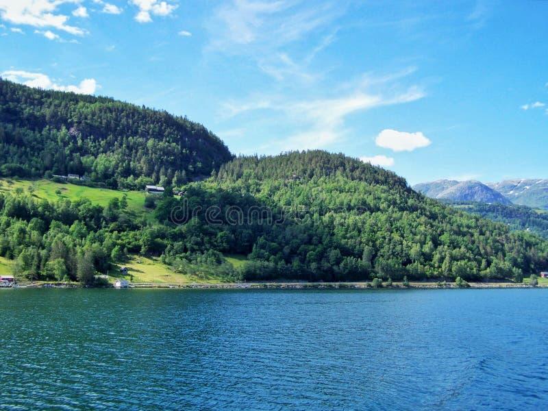 Καλοκαίρι της Νορβηγίας φύσης Νερό, δασικό φιορδ μια ηλιόλουστη ημέρα στοκ εικόνες