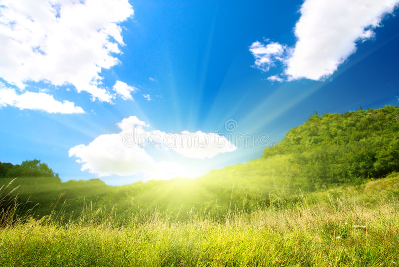 καλοκαίρι φύσης στοκ φωτογραφία με δικαίωμα ελεύθερης χρήσης