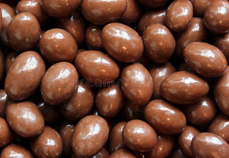 καλυμμένα σοκολάτα καρύ&del στοκ εικόνες