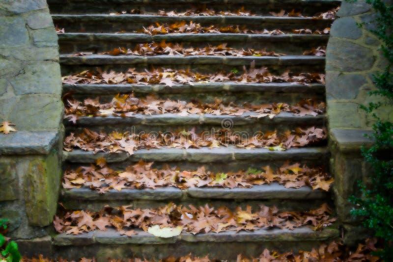 Καλυμμένα φύλλο βήματα στοκ εικόνες