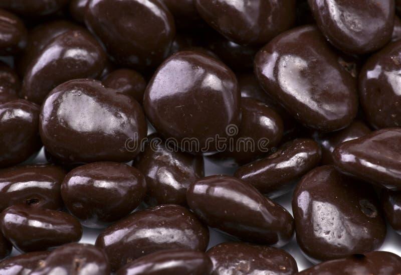 καλυμμένες σοκολάτα σταφίδες στοκ φωτογραφία με δικαίωμα ελεύθερης χρήσης