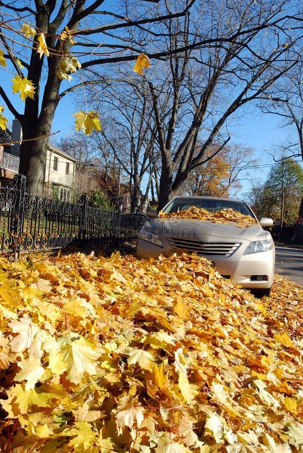καλυμμένο αυτοκίνητο φύλ στοκ εικόνες με δικαίωμα ελεύθερης χρήσης