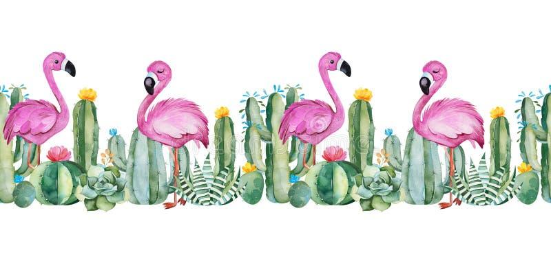 Καλός άνευ ραφής επαναλαμβάνει τα σύνορα με τον πράσινο κάκτο watercolor, succulents, τα λουλούδια και τα ρόδινα φλαμίγκο ελεύθερη απεικόνιση δικαιώματος