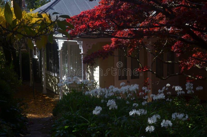 Καλό εξοχικό σπίτι με τον όμορφο θόλο των φύλλων φθινοπώρου στοκ εικόνα με δικαίωμα ελεύθερης χρήσης