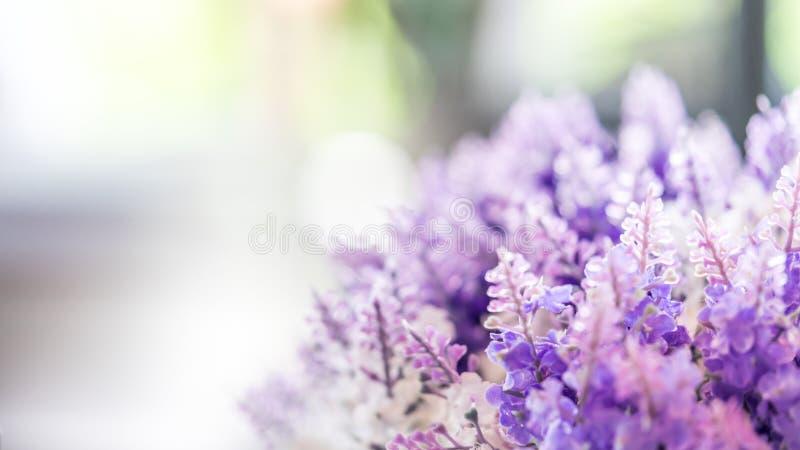 Καλό πορφυρό θολωμένο λουλούδια υπόβαθρο στοκ φωτογραφίες