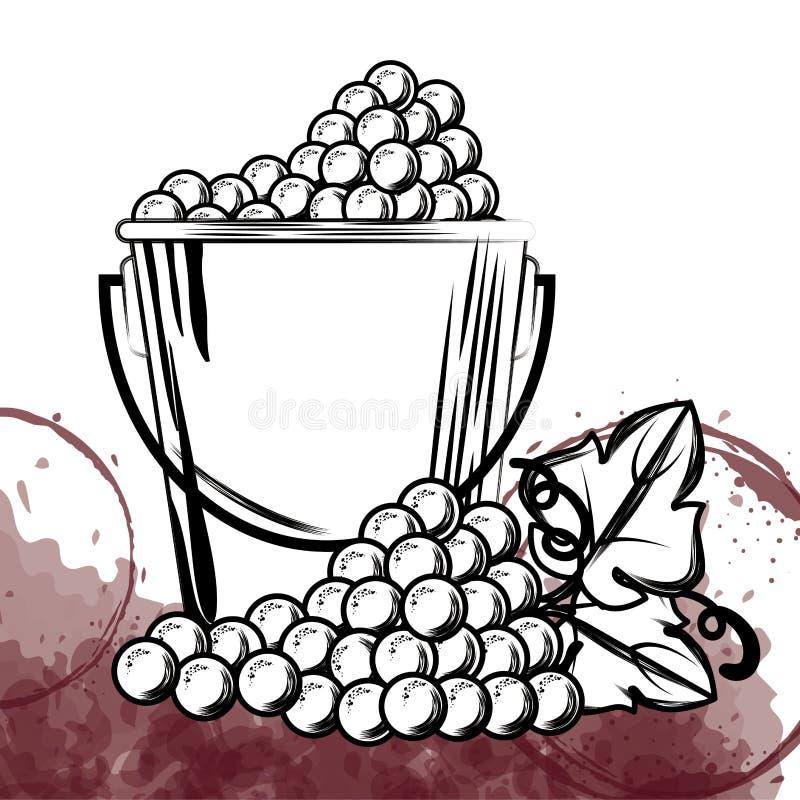 Καλύτερα σταφύλια κρασιού στον κάδο ελεύθερη απεικόνιση δικαιώματος