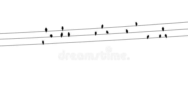 καλώδια πουλιών στοκ εικόνα με δικαίωμα ελεύθερης χρήσης