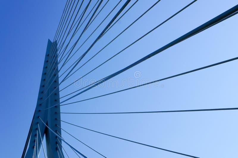 Καλώδια της γέφυρας Erasmus στο Ρότερνταμ στοκ εικόνες με δικαίωμα ελεύθερης χρήσης