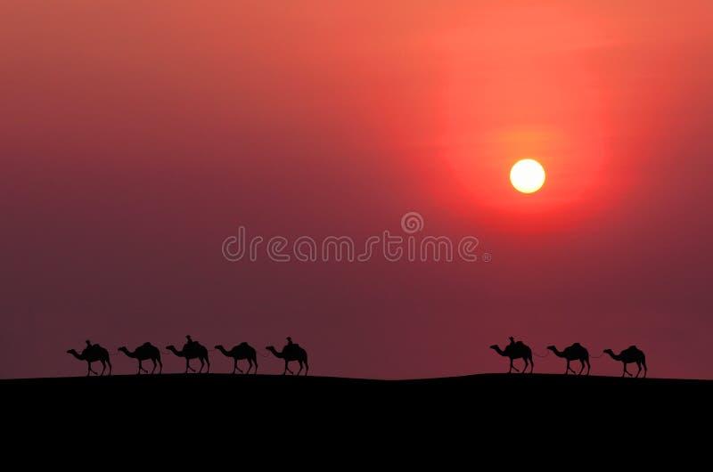 Καμήλα τροχόσπιτων στοκ εικόνα με δικαίωμα ελεύθερης χρήσης
