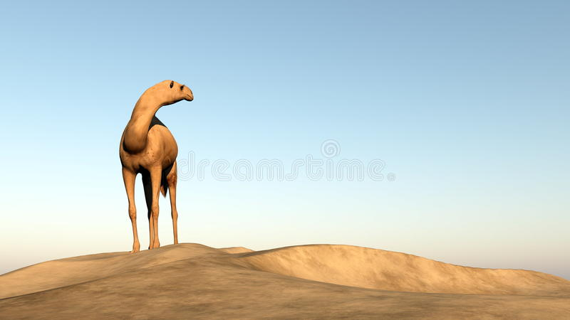 Καμήλα που κοιτάζει πίσω - τρισδιάστατος δώστε ελεύθερη απεικόνιση δικαιώματος