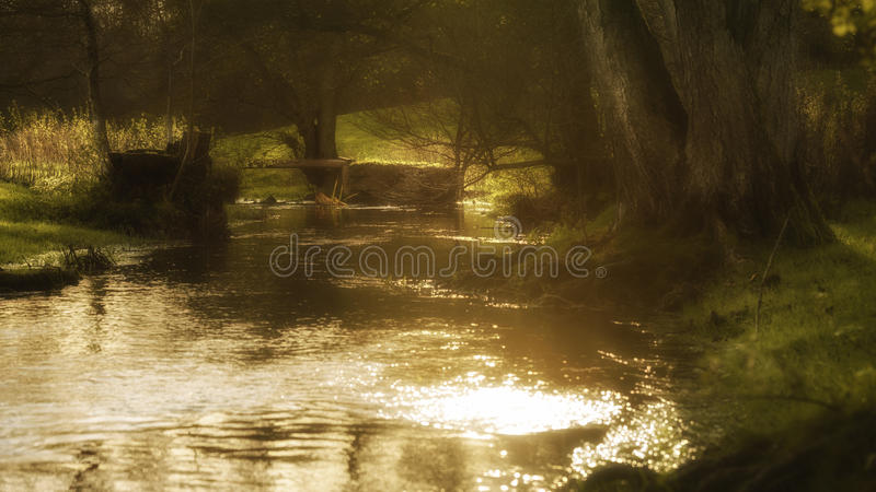 Download Καμμένος αγροτικό ρεύμα με τον ήλιο που λάμπει από το νερό Στοκ Εικόνες - εικόνα από ροή, ύδωρ: 62717782