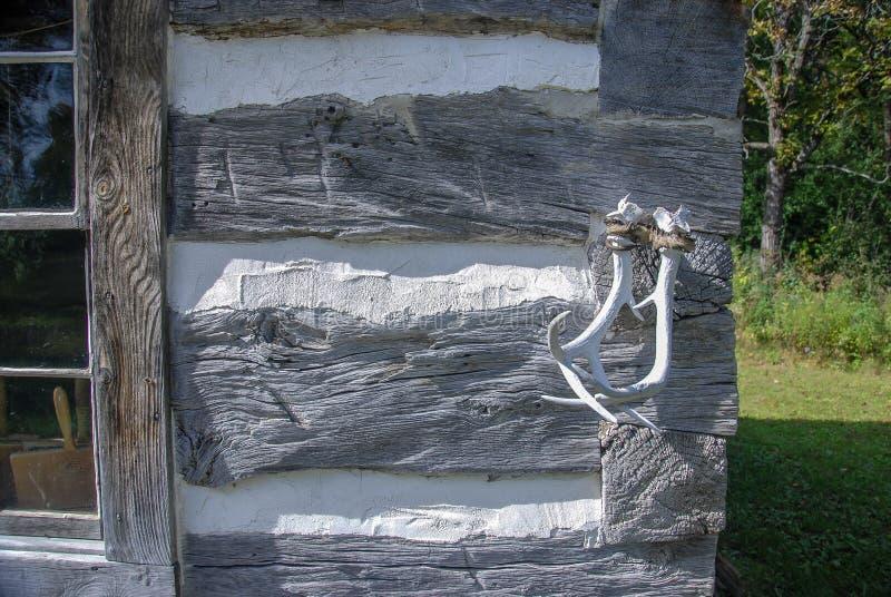 Καμπίνα κούτσουρων και άσπρα ξεπερασμένα ελαφόκερες στο παλαιό Ουισκόνσιν στοκ φωτογραφία