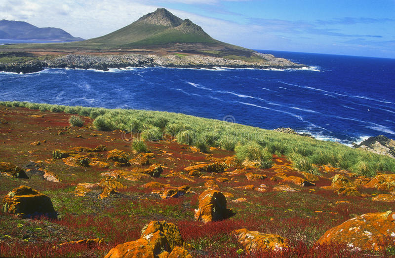 καμπαναριό των Νήσων Φώκλαν&tau στοκ φωτογραφία
