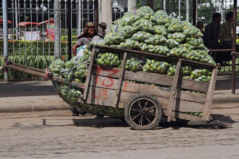 καμποτζιανά φορτωμένα κάρρ&om στοκ εικόνες