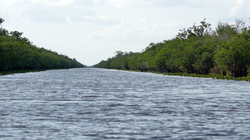 Κανάλι στο Everglades στοκ φωτογραφία