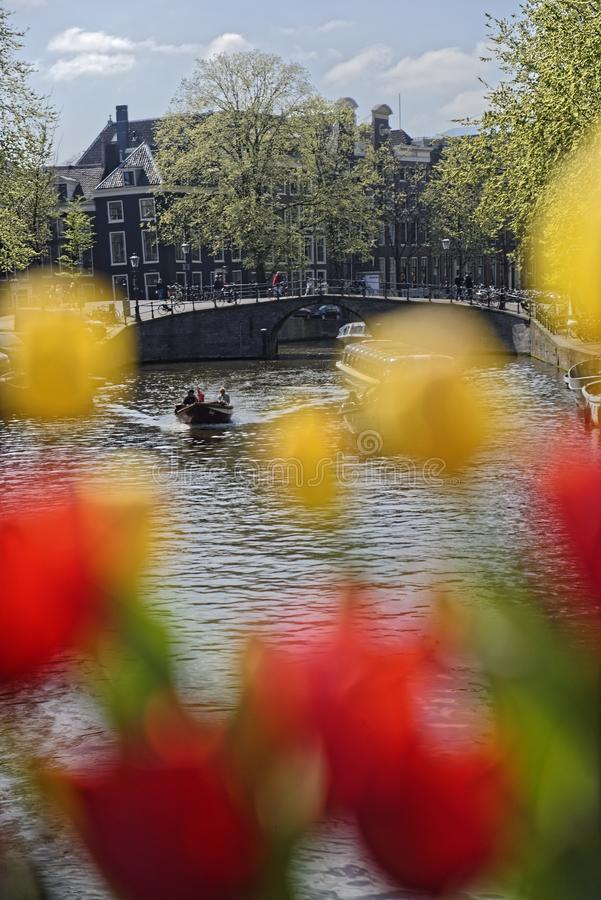 Κανάλι του Άμστερνταμ μέσω των τουλιπών στοκ φωτογραφίες με δικαίωμα ελεύθερης χρήσης