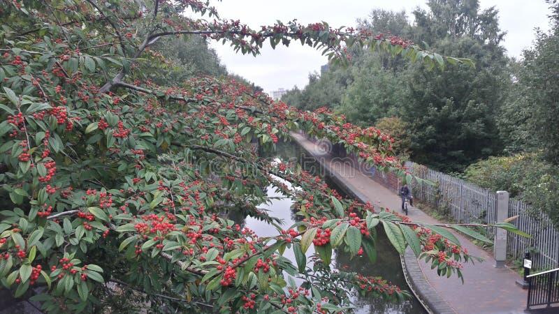 Κανάλι του Μπέρμιγχαμ στοκ φωτογραφίες