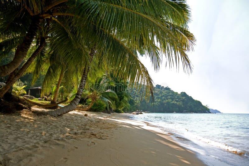 Κανένας στην παραλία Petani στο νησί Perhentian Kecil στη Μαλαισία στοκ εικόνα με δικαίωμα ελεύθερης χρήσης
