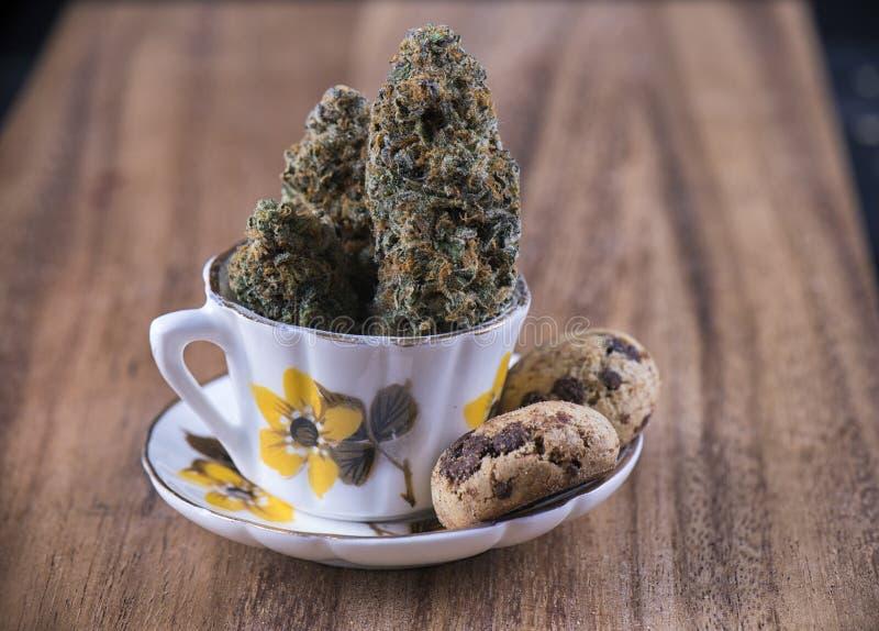 Καννάβεις nugs και εμποτισμένα μπισκότα τσιπ σοκολάτας - ιατρικοί Μάρι στοκ εικόνα με δικαίωμα ελεύθερης χρήσης