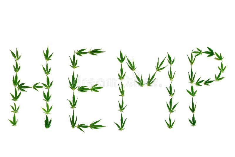 ΚΑΝΝΑΒΗ λέξης φιαγμένη από πράσινα φύλλα στο άσπρο υπόβαθρο στοκ εικόνα με δικαίωμα ελεύθερης χρήσης