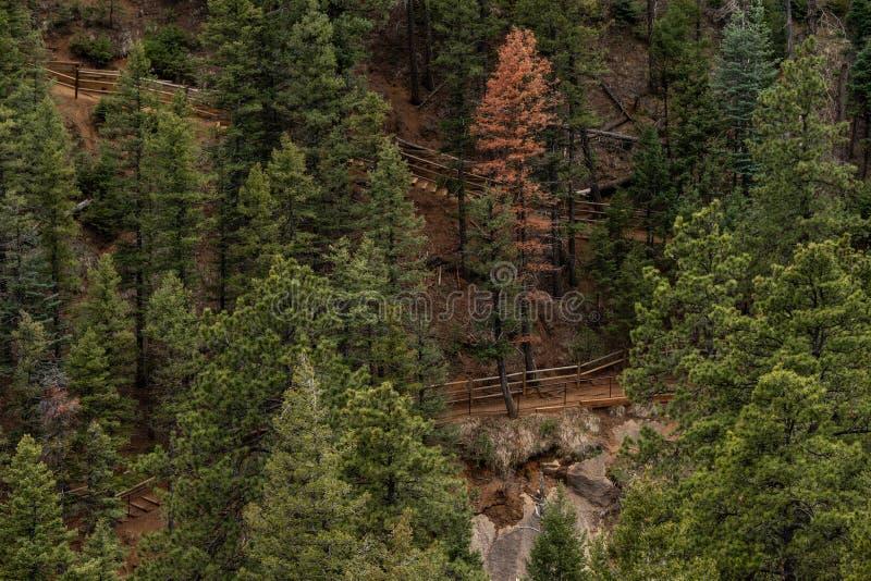 Κανόνας Colorado Springs φαραγγιών του βόρειου Cheyenne στοκ φωτογραφία