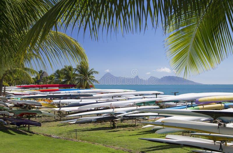 Κανό ζυγοστατών Jardins de Paofai, Pape'ete, Ταϊτή, γαλλική Πολυνησία στοκ φωτογραφίες