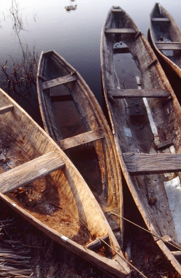 Κανό πιρογών, περουβιανός Αμαζόνιος στοκ φωτογραφία