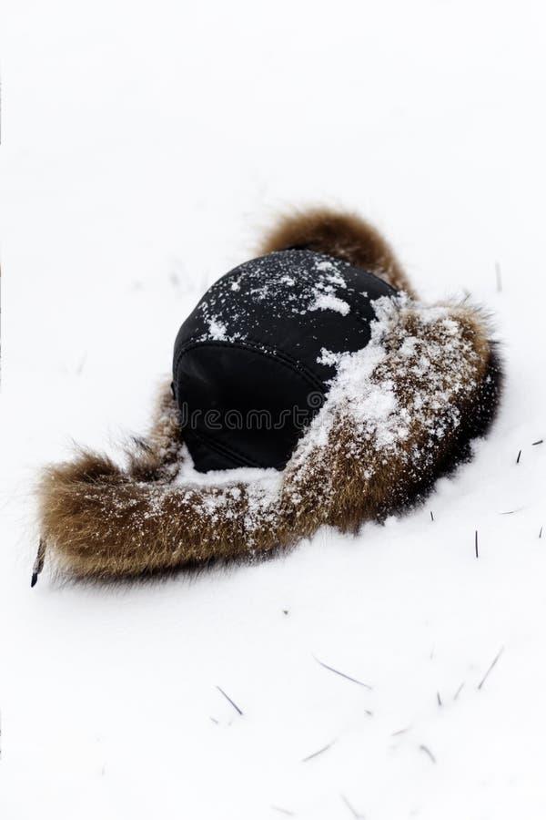Καπέλο γουνών για το χειμώνα που καλύπτεται στο χιόνι Το πρώτο χιόνι έπεσε έχετε τον τονισμό χιόνι στοκ εικόνες με δικαίωμα ελεύθερης χρήσης