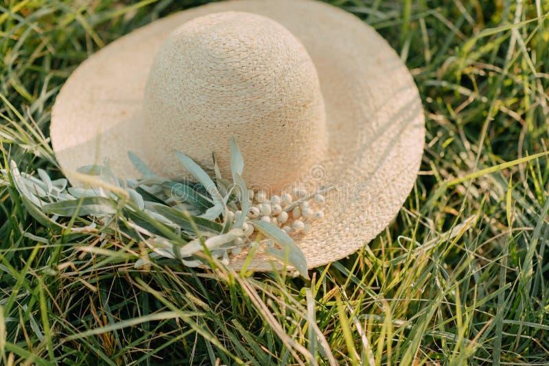 Καπέλο με το κλαδί ελιάς στοκ εικόνες με δικαίωμα ελεύθερης χρήσης