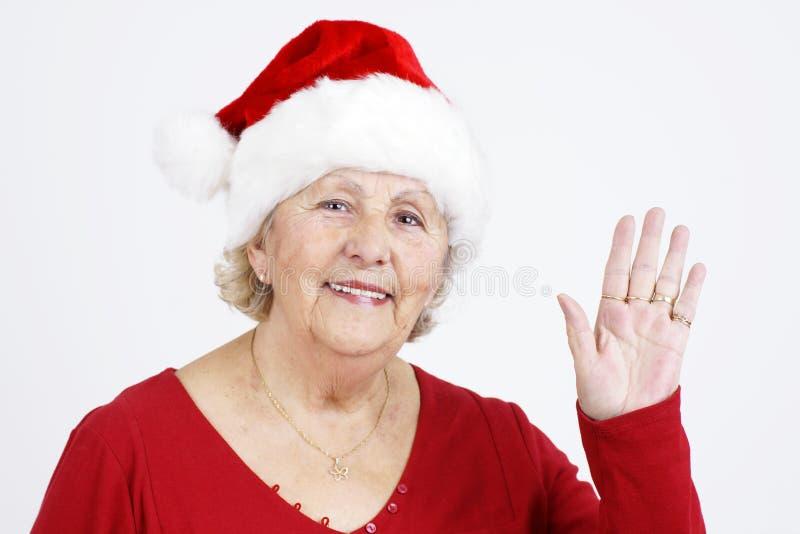 καπέλο grandma Χριστουγέννων γ&eps στοκ εικόνες με δικαίωμα ελεύθερης χρήσης