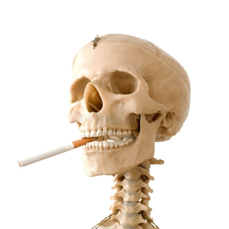 καπνίζοντας στάση στοκ φωτογραφίες