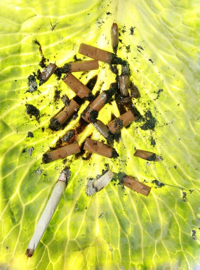 καπνιστές πνευμόνων στοκ φωτογραφία με δικαίωμα ελεύθερης χρήσης
