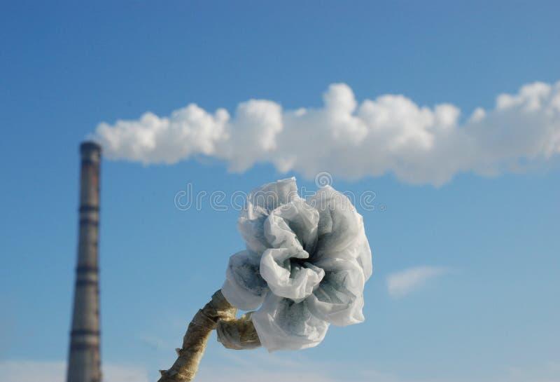 Καπνοδόχος με το λουλούδι εγγράφου στοκ φωτογραφία με δικαίωμα ελεύθερης χρήσης