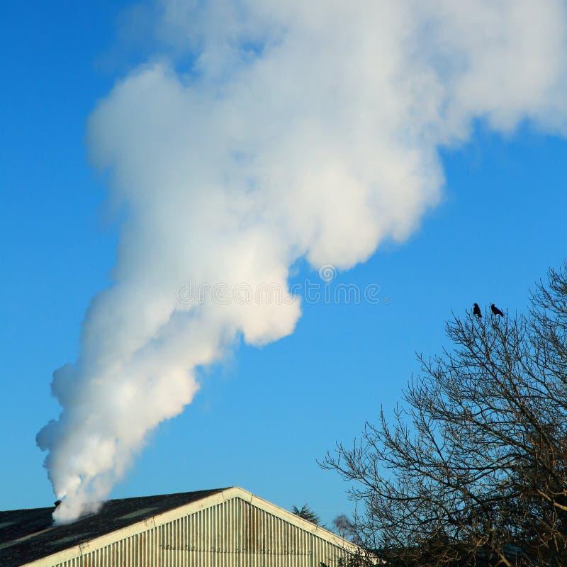 Καπνός από το εργοστάσιο στοκ φωτογραφίες με δικαίωμα ελεύθερης χρήσης