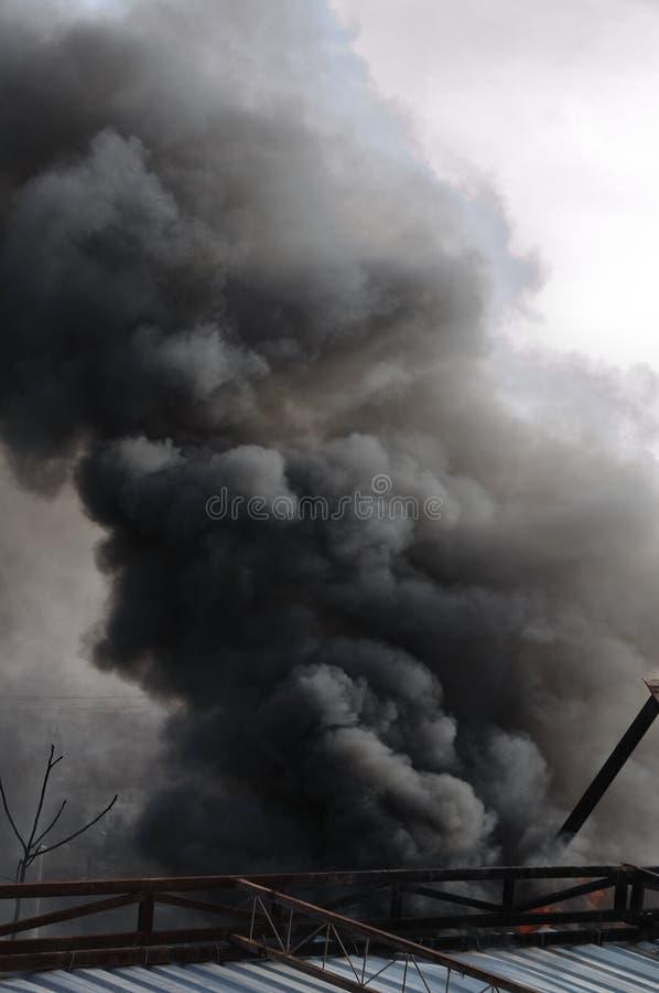 καπνός λοφίων στοκ φωτογραφία με δικαίωμα ελεύθερης χρήσης