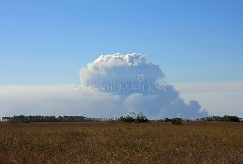 Καπνός πέρα από το Sawgrass, εθνικό πάρκο Everglades στοκ φωτογραφία με δικαίωμα ελεύθερης χρήσης