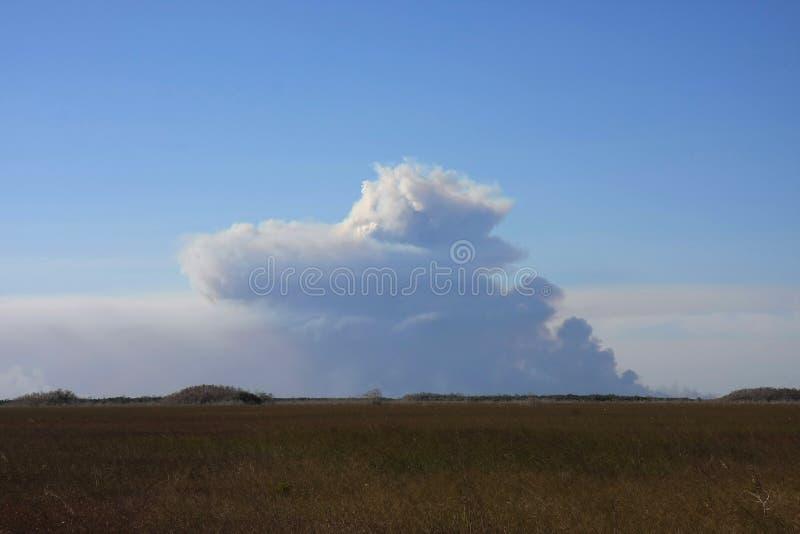 Καπνός πέρα από το Sawgrass, εθνικό πάρκο Everglades στοκ εικόνα