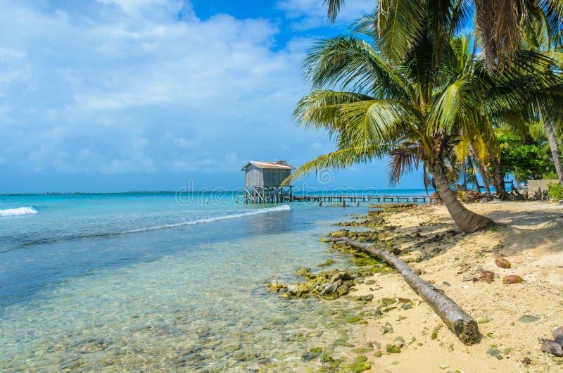 Καπνός Caye - μικρό τροπικό νησί στο σκόπελο εμποδίων με την παραλία παραδείσου, καραϊβική θάλασσα, Μπελίζ, Κεντρική Αμερική στοκ φωτογραφίες με δικαίωμα ελεύθερης χρήσης